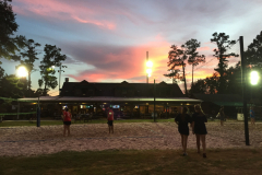 Volleyball League Night